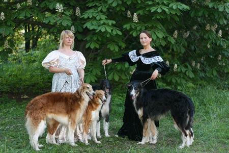 http://borzoi.rusdog.ru/show/2007-05-20/2007-05-20-012.jpg